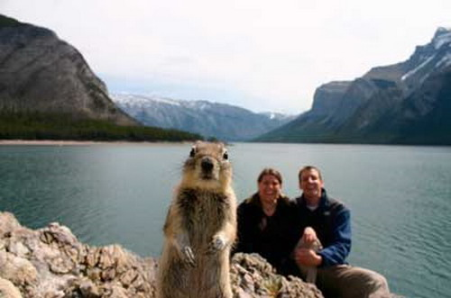 My favourite 'Photobomb' Ever