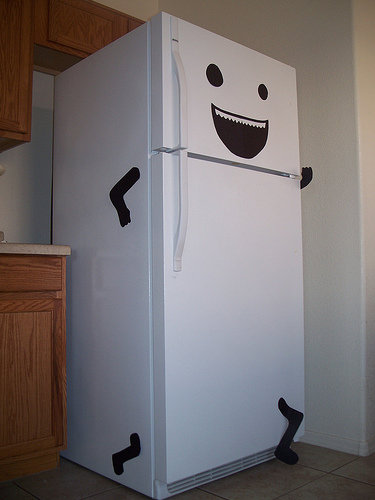 Stop that fridge!