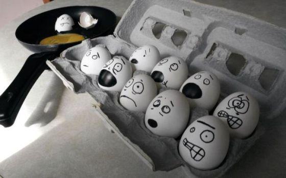 Eggheads?